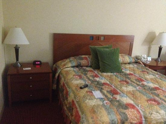 Southbridge Hotel And Conference Center: Bed with lampstand.