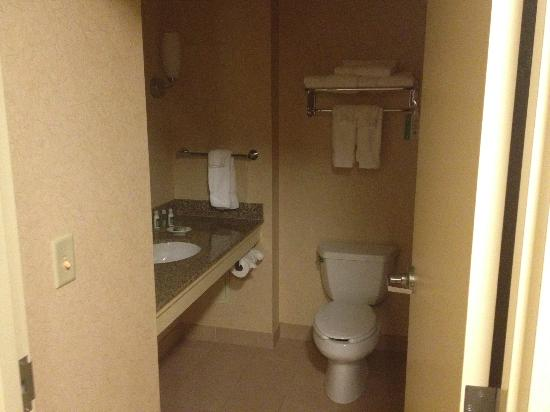 Southbridge Hotel And Conference Center: The bathroom was good for the price.