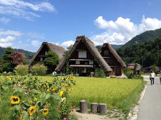 summer - Picture of Shirakawago Gassho Zukuri Minkaen, Shirakawa-mura - TripA...