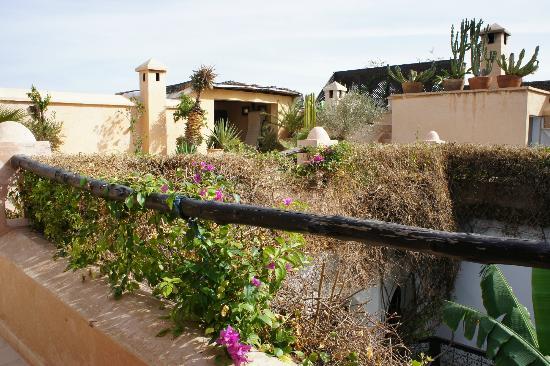 Dar Mouassine: Terrasse