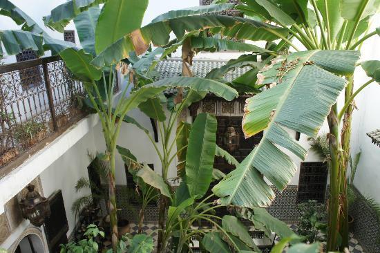 Dar Mouassine: Vue de la chambre
