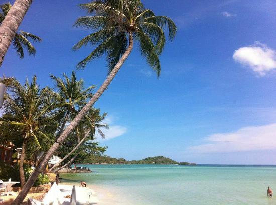 Ark Bar Beach Resort Chaweng Koh Samui