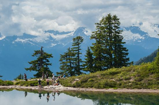 Summer at Elfin Lakes, Garibaldi Park, Squamish BC