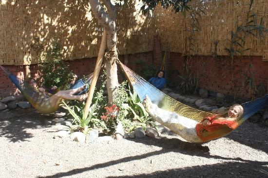 Hostel Nasca Trails: Relaxing in the warm sun.
