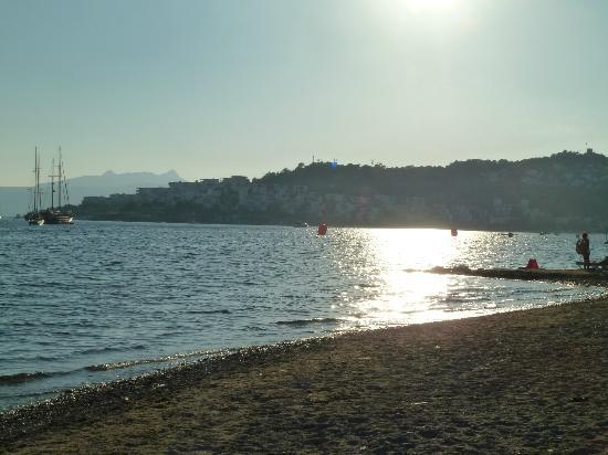 Summer Garden Apart Hotel: Bitez beach