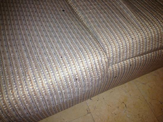 Eurostars Zona Rosa Suites: Weird stains/crusty burn marks? on couch