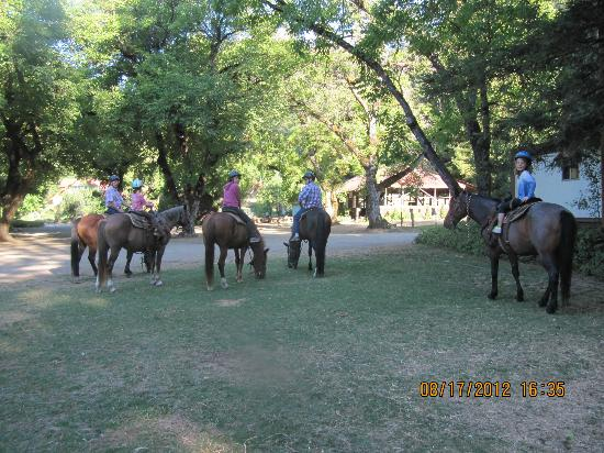 Marble Mountain Ranch - Family Guest Ranch : Off for a ride