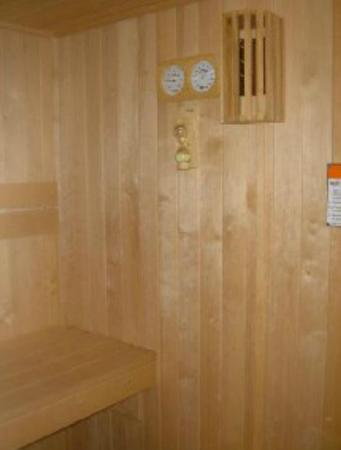 Patio Motor Court: Sauna