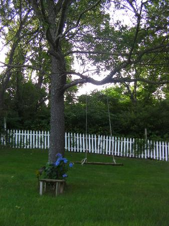 White Swan Bed and Breakfast: Lovely back yard