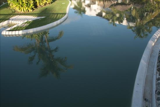 Occidental Grand Punta Cana: Pool after Storm, closed for 5 days due to Tropical Storm