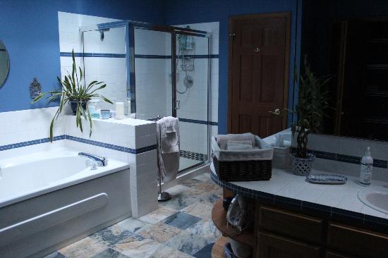 Enliven Chemical-Free Bed and Breakfast: The spacious bathroom in Suite Mama Blue/the All Together Suite.