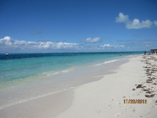 Blue Haven Resort: beach