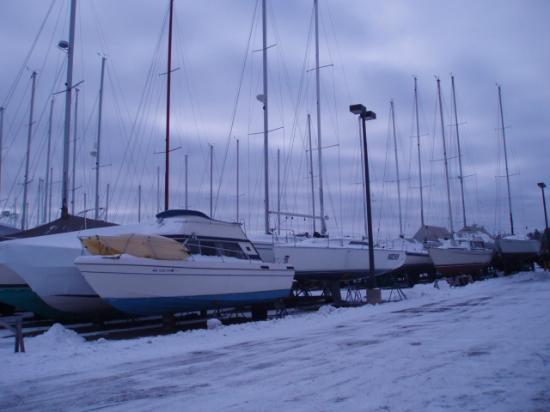 Barkers Island Inn: Marina
