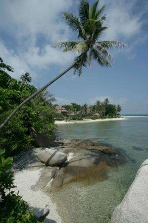 Nikoi Island: View towards rooms and beach
