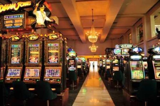 ovo casino viña