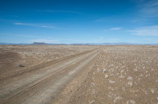 Tankwa Karoo National Park: Typical Tankwa road