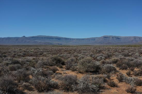 Tankwa Karoo National Park: Tankwa landscape