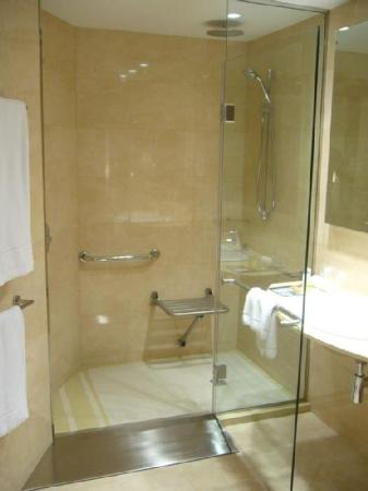 Hotel Gran Ultonia Girona: Bathroom