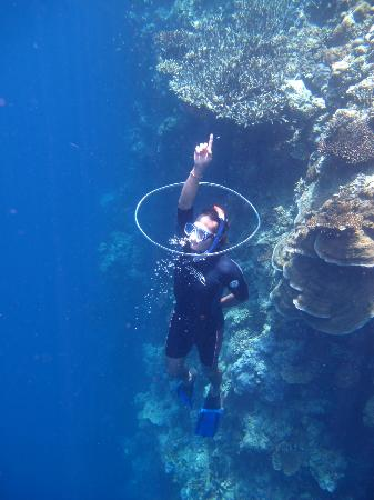 Pemuteran, Indonesia: Bubble Ring