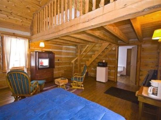 Galena Log Cabin Getaway: Other Hotel Services/Amenities