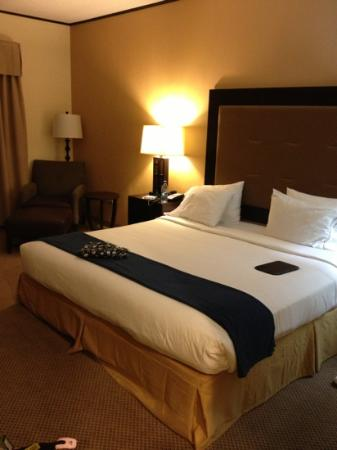 Holiday Inn Express Absecon - Atlantic City Area: King size bed...very comfy with a firm and soft pillow for each guest