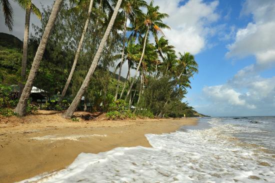 foto de ellis beach oceanfront bungalows ellis beach our. Black Bedroom Furniture Sets. Home Design Ideas