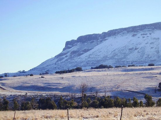 Greensleeves Guesthouse Harrismith: Snow
