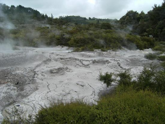 Archer Tours: Mud Pools