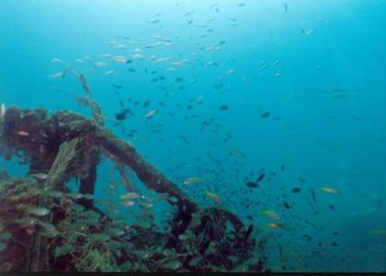 Co Co Dive: Kenyalang Wreck