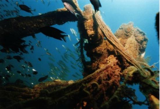 Co Co Dive: Sri Gadong Wreck