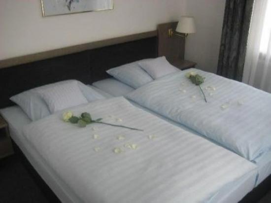 Hotel Schwert: Guest Room