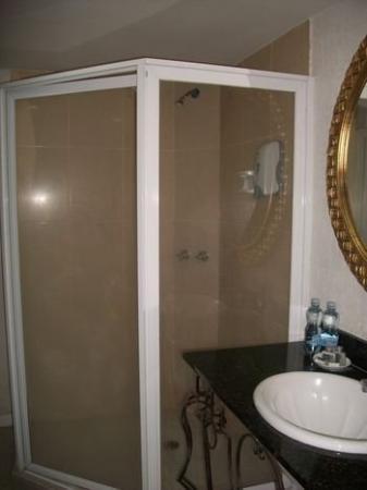 Hotel Zar Guadalajara: Bathroom