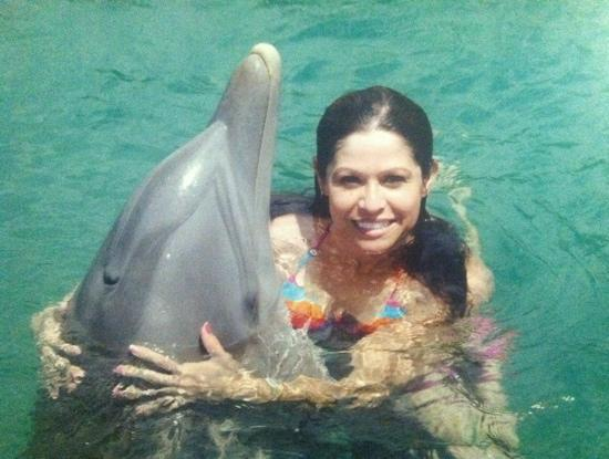 Taino Beach: dolphin swim (UNEXSO)