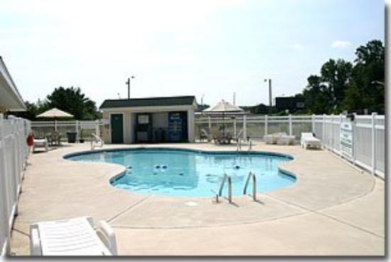 Sea Esta Motel II: Sea Esta Pool