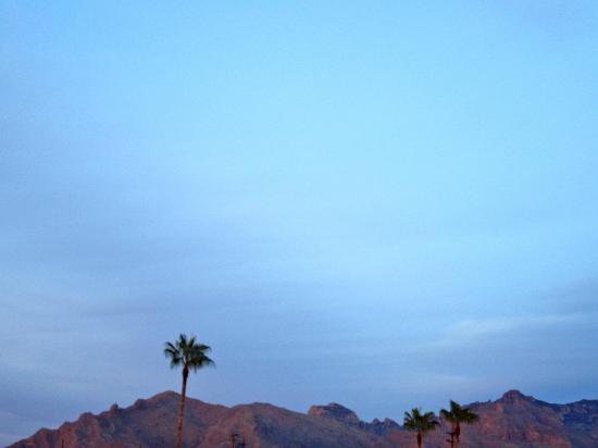 Best Western Innsuites Tucson Foothills Hotel & Suites: Veranda View
