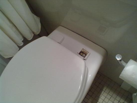 """Hotel des Colonies: La tazza del cesso con un """"fermo"""" mancante."""