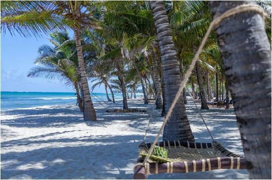 Amani Tiwi Beach Resort: Beach