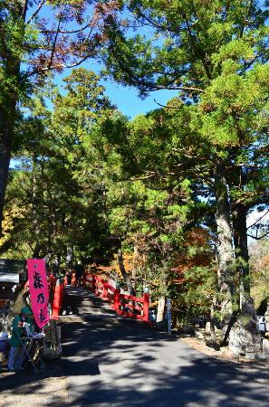 Daitoin Temple: 大洞院参道