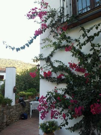Restaurant Molino del Santo : La terraza al lado de la cascada.