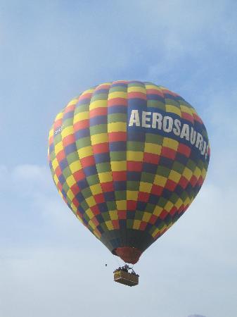 Aerosaurus Balloons -Tours