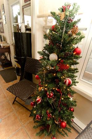 Antigonish Evergreen Inn: Christmas Tree in the lobby