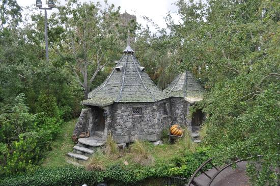 Hagrid 39 s house picture of the wizarding world of harry What house was hagrid in