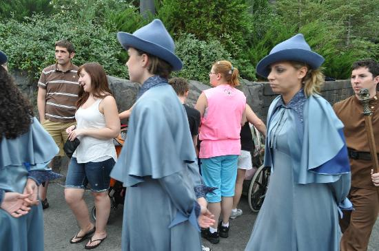 The Wizarding World of Harry Potter: The Beauxbaton Girls....