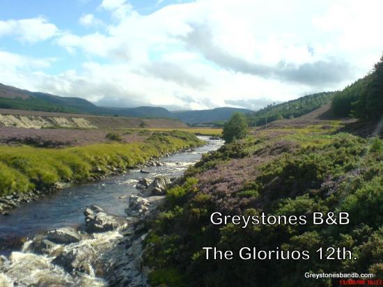 Greystones B&B: 12th Aug.2007