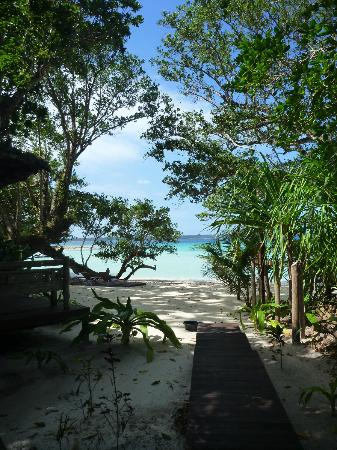 Barrier Beach House: View of beach from outside our fare