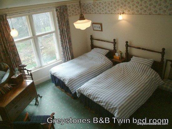 Greystones B&B: Owl twin room