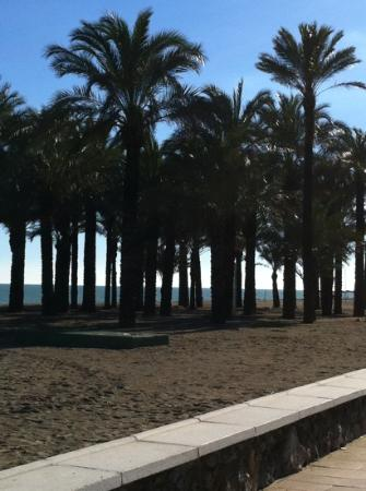 ClubHotel Riu Costa del Sol: beach view