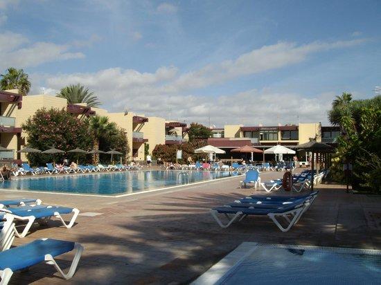 La piscine picture of hotel palia don pedro costa del - Piscine martianez tenerife ...