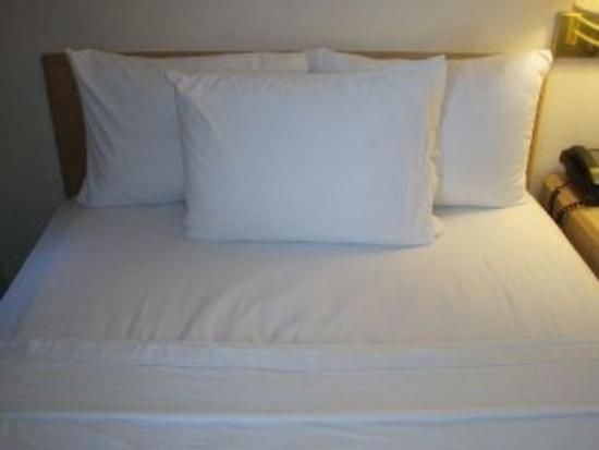 Knights Inn & Suites Yuma: Doublebed