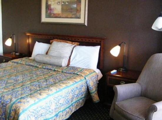 Budget Inn Palmyra: Guest Room